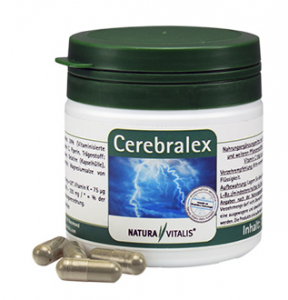 Cerebralex